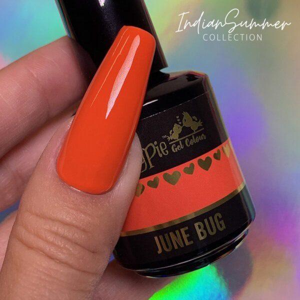 june-bug (1)