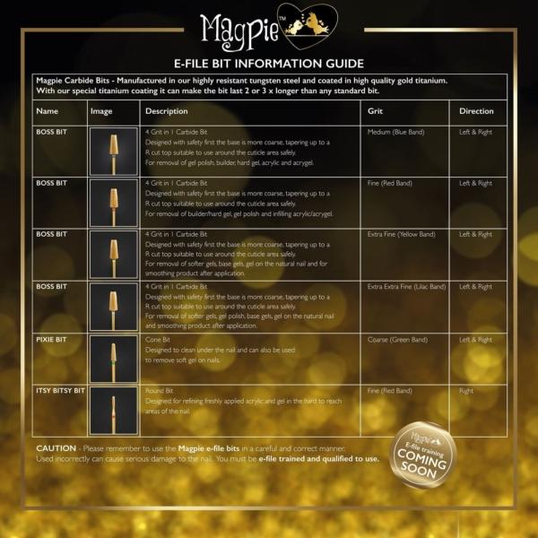 Magpie E-File Bit Information Guide-02